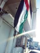 Flags dot the landscape